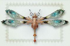 MBdragonfly.jpg